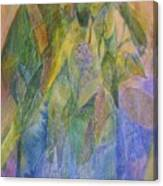 Philodendron Phun Canvas Print