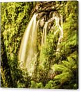 Philosopher Falls, Western Tasmania Canvas Print