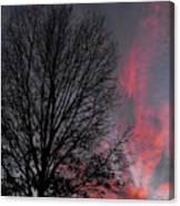 Phoenix Cloud Rising Canvas Print