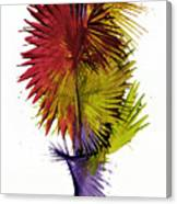 Phoenix Is Rising Series 1799.022414 Canvas Print