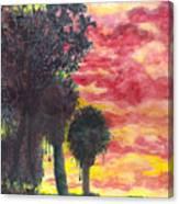 Phoenix Sunset Canvas Print