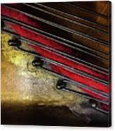 Piano Wire II Canvas Print