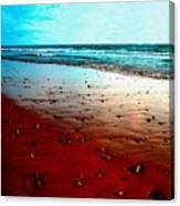 Picasso Beach Canvas Print