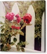 Picket Fence Canvas Print