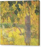 Picking Fruit From A Tree Canvas Print