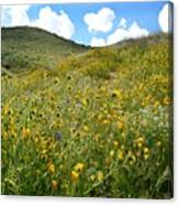 Picture Perfect Spring Canvas Print