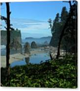 Picturesque Ruby Beach View Canvas Print