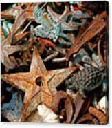 Pieces Of Iron Canvas Print
