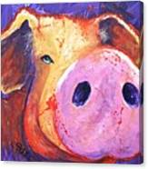 Pig On Purple I Canvas Print