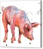Pig Painting Canvas Print