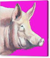 Pig Painting - Kitchen Art Canvas Print