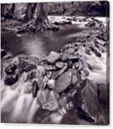 Pigeon Forge River Great Smoky Mountains Bw Canvas Print