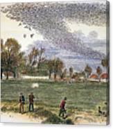 Pigeon Hunting, C1875 Canvas Print