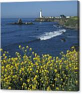 Pigeon Point Panorama Canvas Print