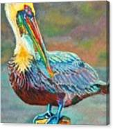 Pile High Pelican Canvas Print
