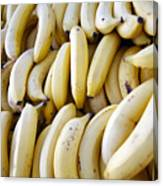 Pile Of Bananas Canvas Print