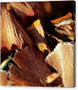 Pile Of Discarded Pencil Shavings Canvas Print