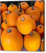 Pile Of Pumpkins For Sale Expressionist Effect Canvas Print