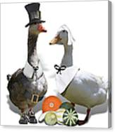 Pilgrim Ducks Canvas Print