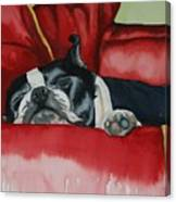 Pillow Pup Canvas Print