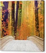 Pine Bank Splendor Canvas Print