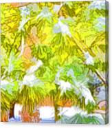 Pine Branch Under Snow Canvas Print