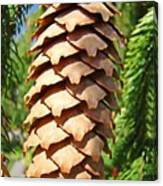 Pine Cone Art Prints Pine Tree Artwork Baslee Troutman Canvas Print