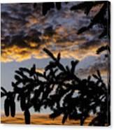 Pine Cone Sunset Canvas Print