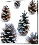 Pine Cones Looking Like Christmas Trees On White Snowy Backgroun Canvas Print