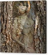 Pine Tree Nymph Canvas Print
