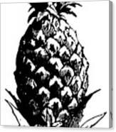 Pineapple Print Canvas Print