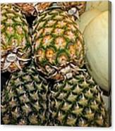 Pineapples And Melons Canvas Print