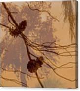 Pinecone Overlay Bright Horizontal Canvas Print