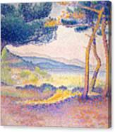 Pines Along The Shore, 1896 Canvas Print