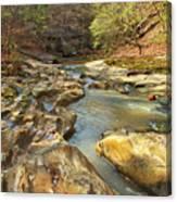 Piney Creek Ravine Revisited 1 Canvas Print