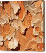 Pining For A Jig-saw Puzzle Canvas Print