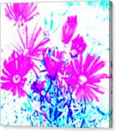 Pink And Blues Canvas Print