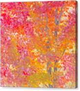 Pink And Orange Autumn Canvas Print