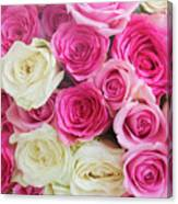 Pink And White Roses Bunch Canvas Print