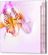 Pink Blotchy Orchid Calendar 2016 Canvas Print