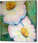 Pink Disc Flowers Canvas Print