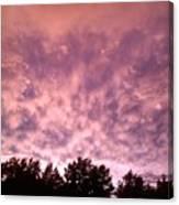 Pink Dusk Canvas Print