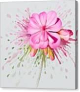 Pink Eruption Canvas Print
