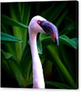 Pink Flamingo Bliss Canvas Print