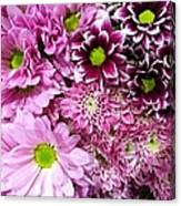 Pink Flower Carpet Canvas Print