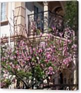 Pink Flower Tree. Elegant Canvas Print