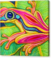 Pink Frog On Leafs Canvas Print