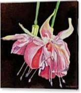 Pink Fuscia Canvas Print
