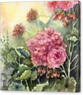 Pink Geranium's  Canvas Print
