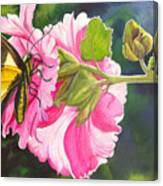 Pink Hollyhock Canvas Print